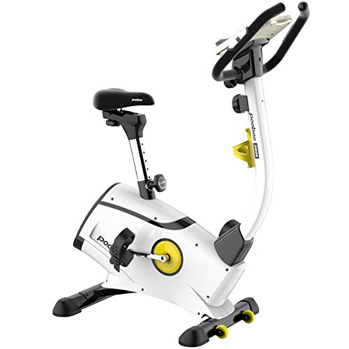 L NOW Exercise Bike, Indoor Cycling Bike,...
