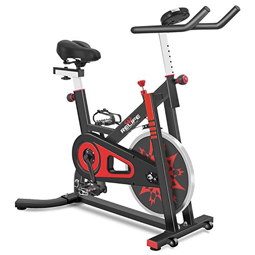 RELIFE REBUILD YOUR LIFE Exercise Bike Indoor...