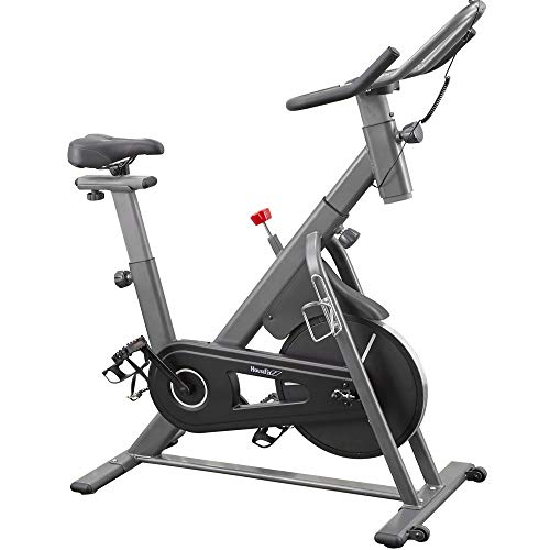 HouseFit Indoor Cycling Bike Stationary...