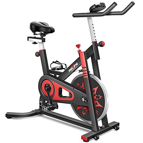 RELIFE REBUILD YOUR LIFE Exercise Bike Indoor...