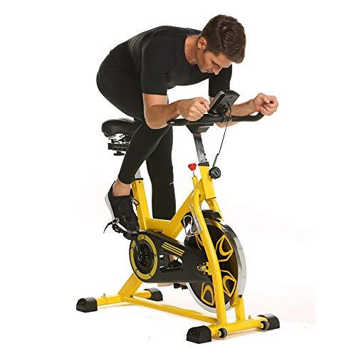 Aceshin Indoor Cycling Bike with 49lbs...