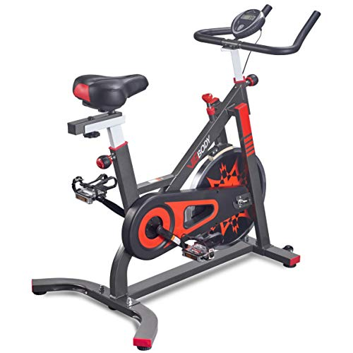 VIGBODY Exercise Bike Indoor Cycling Bicycle...