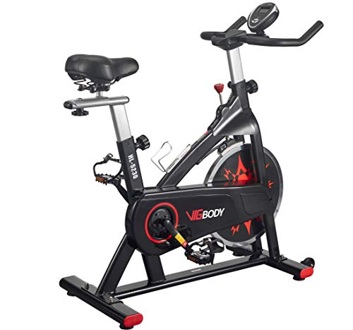 VIGBODY Exercise Bike Indoor Cycling Bike...