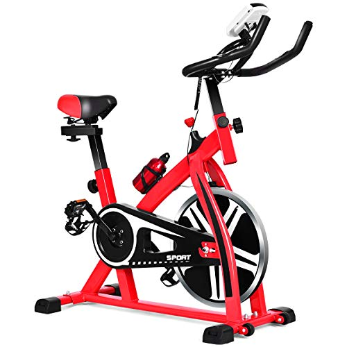 GYMAX Indoor Exercise Bike, Stationary...