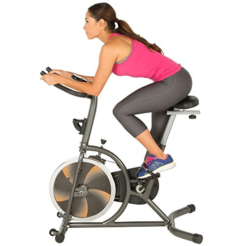 Fitness Reality S275 Exercise Bike/Indoor...