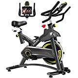 Cyclace Indoor Exercise Bike Stationary...
