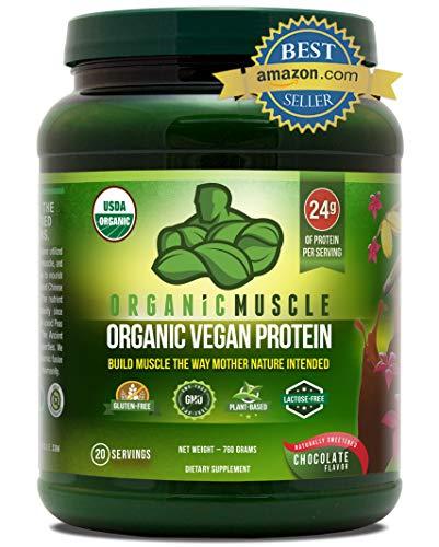 Organic Vegan Protein Powder - Great Tasting...