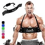 CELEBRITA Arm Blaster for Biceps & Triceps,...