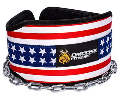 DMoose Fitness Premium Dip Belt With Chain