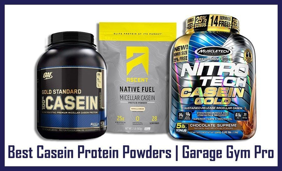 Best Casein Protein Powders
