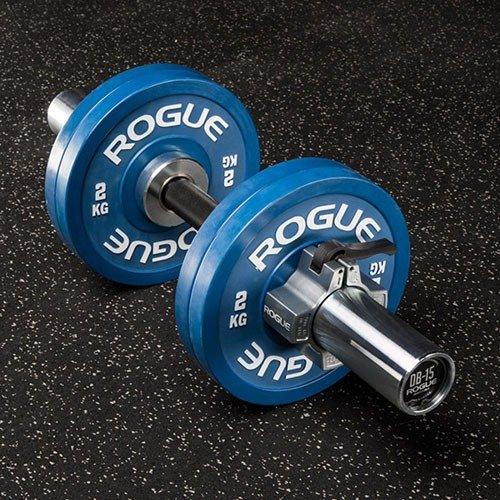 Rogue Fitness Loadable Dumbbells