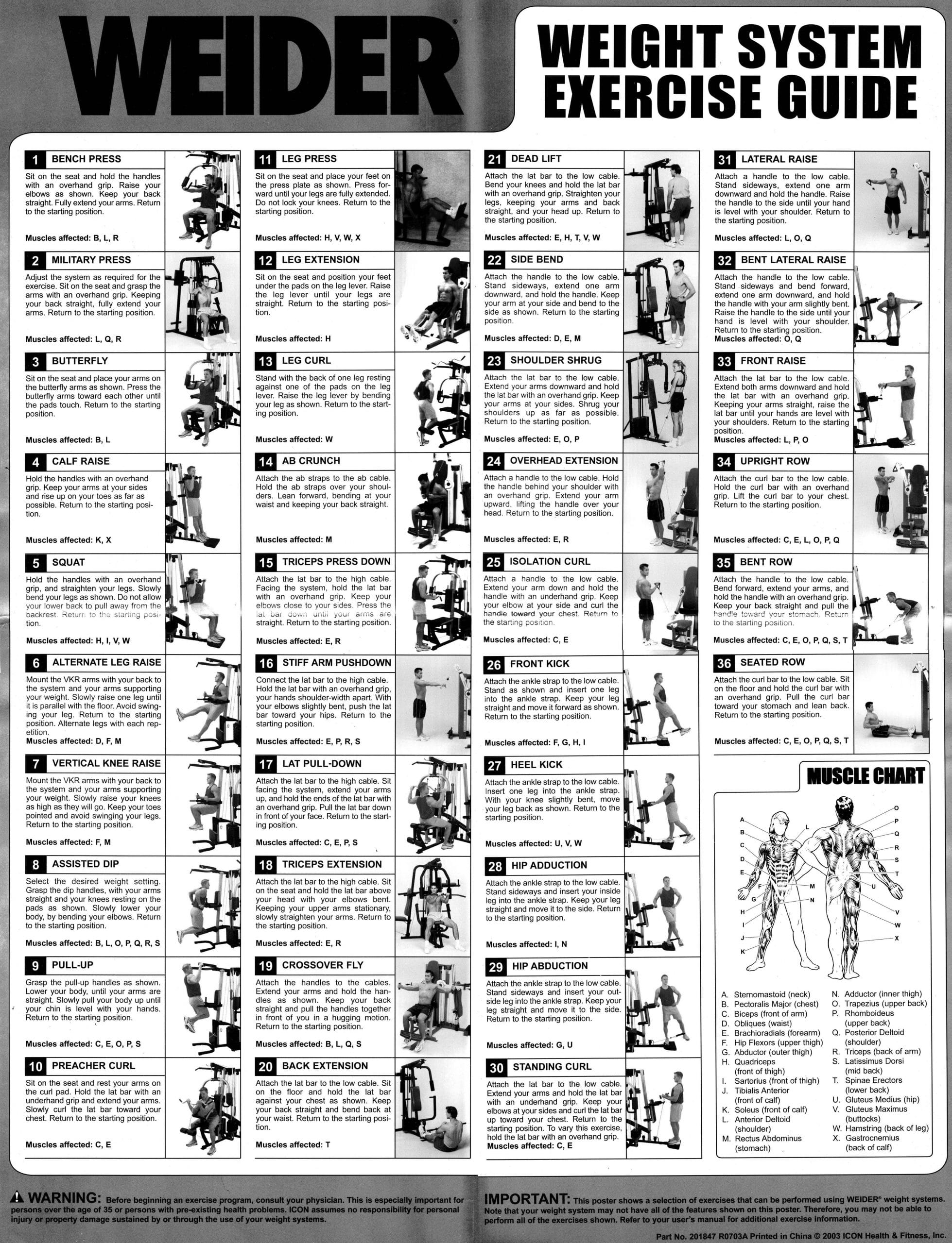 weider legacy exercise chart