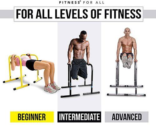 Lebert Fitness Equalizer Total Body Strengthener Dip Bars